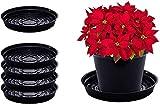 Curtis Wagner Plastics Drip Pan Plant Saucers (5-Pack) - Black, Round...
