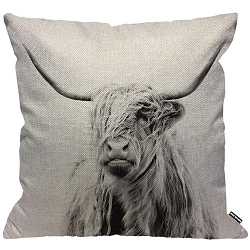 HGOD DESIGNS Cute Cow Cushion Cover,Portrait of A Highland Cow Cattle Hairy Nature Wildlife Throw Pillow Case Home Decorative for Men/Women Living Room Bedroom Sofa 18X18 Inch Pillowcase 45X45cm