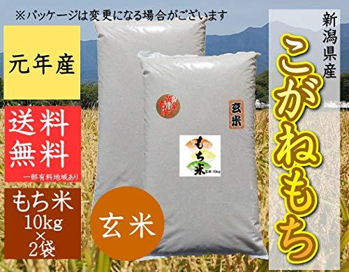 新潟県産 こがねもち 令和元年産 玄米 餅米 「新潟の美味しい餅米」 (玄米 10�s×2袋)