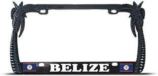 Billion_Store Black Metal Palm Tree Belize Flag Tropical License Plate Frame Tag Border Premium Stainless Steel License Plate Frame Materials