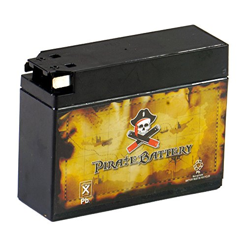 Chrome Battery YT4B-BS High Performance-Maintenance Free-Sealed AGM Motorcycle Battery for TTR50