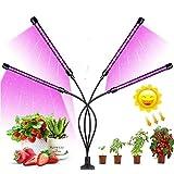 Ellecutteyi Lampada Piante Coltivazione Luminosità Led Lampada Crescente Spettro Completo con Timer Automatico 3H/9H/12H per Vegetali Fiore Luce