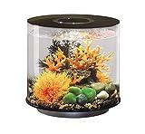Oase Biorb Tube 15 LED pour Aquarium Noir 5,249 kg