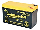 12V 8 Amp GS Battery GT12080-HG Rechargeable Battery for Security Systems