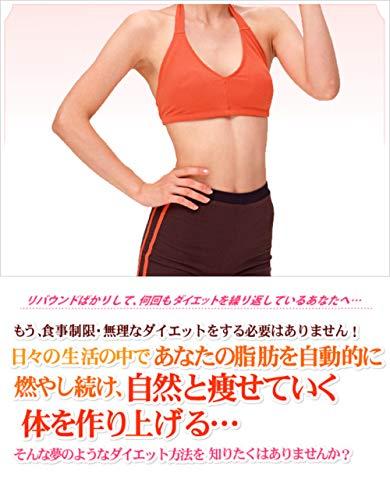 zettaini risouno karada wo teniireru houhou: saisin daietto mesoddo (Japanese Edition)
