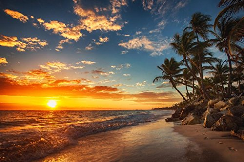 Sunrise Over Tropical Beach Palm Tree Ocean Photo Photograph Sunset Island Poster Tropical Nature Scene Palm Tree Scenic Relaxing Calm Sea Waves Sand Beautiful Cool Wall Decor Art Print Poster 36x24