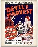 Devil's Harvest - The Truth About Marijuana 11x14 Unframed Art Print - Great Rehabilitation Center Wall Sign Under $15
