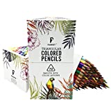 Parrot Premier 72ct Colored Pencils, Soft Core, Triangular-Shaped, Pre-Sharpened, for Artists & Adult Coloring Book