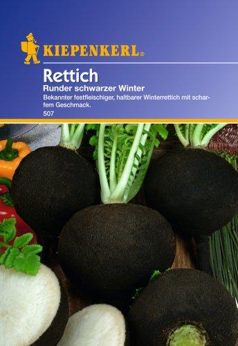Sperli Gemüsesamen Rettich runder schwarzer Winter, grün
