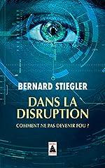 Dans la disruption (babel) - Comment ne pas devenir fou ? de Bernard Stiegler