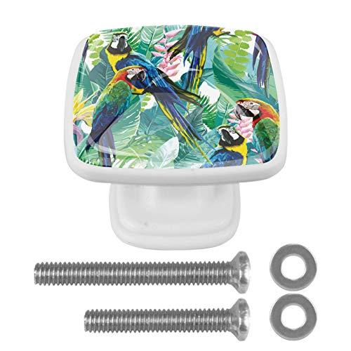 Tirador de armario con diseño de loro pintado con plantas tropicales de color verde, 4 piezas, cuadrados, para dormitorio, sala de estar, habitación de los niños, cocina, decoración del hogar