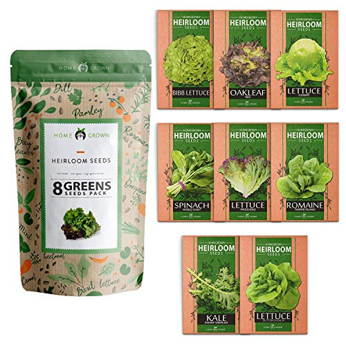 Lettuce & Salad Greens Seed Vault - Non-GMO Vegetable Seeds for Outdoors or Indoors - Romaine Butter Iceberg Lettuce Seeds for Planting, Kale Spinach & More - Hydroponic Home Garden Seeds (8 Variety)