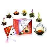 Creano - Un Mix de Té de Flores - 'Fior di Tè' Set de Regalo con Jarra de Cristal | Té blanco y Té negro (6 Tipos diferentes)