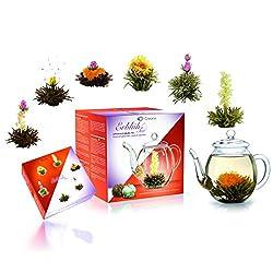 Creano Teeblumen Mix - Geschenkset ErblühTee mit Glaskanne 500ml Weißtee & Schwarztee mit 6 Teekugeln je 3x weißer & schwarzer Tee