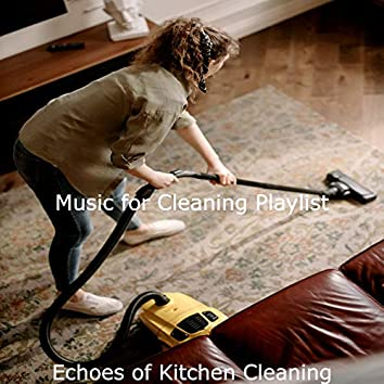 Echoes of Kitchen Cleaning
