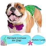 Pet Krewe Mermaid Costume for Dog  Medium/Large Pet Costume Mermaid Tail with Two-Toned Sequins & Adjustable Seashell Bra