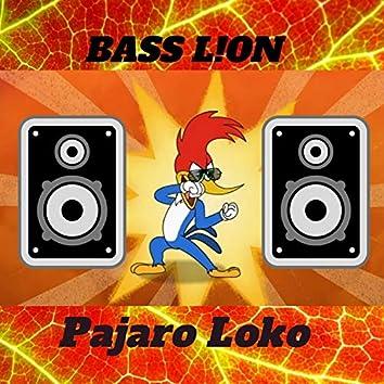 Pajaro Loko