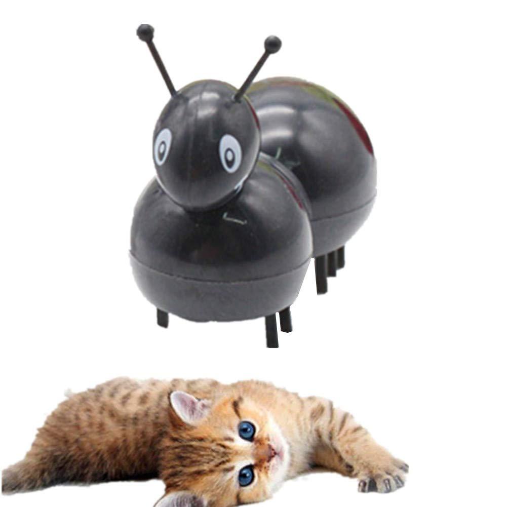 BOENTA Raton Teledirigido para Gatos Gatos Juguetes Gato Juguetes Juguete De Gato Juguetes De Gatito para Gatos De Interior Regalos para Gatos antblack: Amazon.es: Hogar