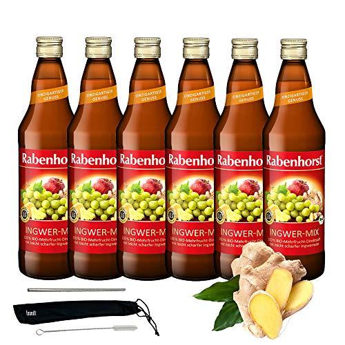 Rabenhorst Saft Ingwer-Mix 6x 700ml Vegan Bio-Mehrfruchtsaft mit 1% Ingwersaft - 100% Bio-Direktsaft mit leicht scharfer Ingwernote PLUS fooodz-Trinkhalm Set mit Reinigungsbürste
