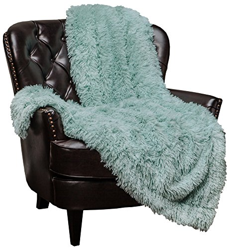 Chanasya Shaggy Throw Blanket for the Couch