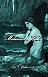 Melusina's Wish: An Erotic Fantasy Adventure...