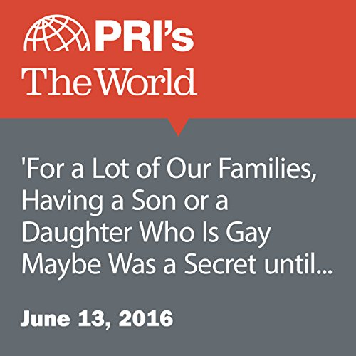 'For a Lot of Our Families, Having a Son or a Daughter Who Is Gay Maybe Was a Secret until This Weekend' cover art