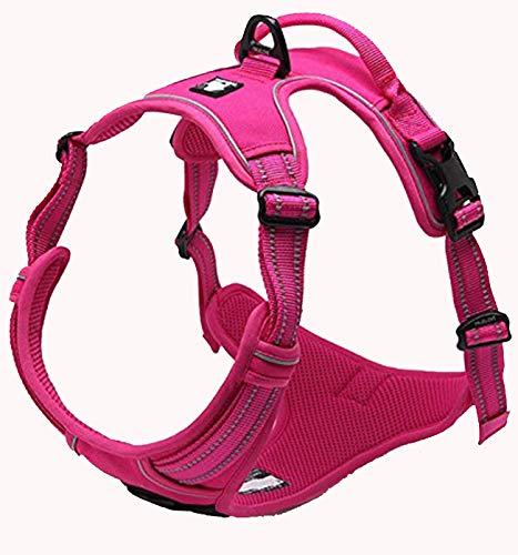 TrueLove Adjustable Dog Harness