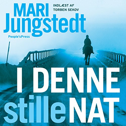 I denne stille nat audiobook cover art