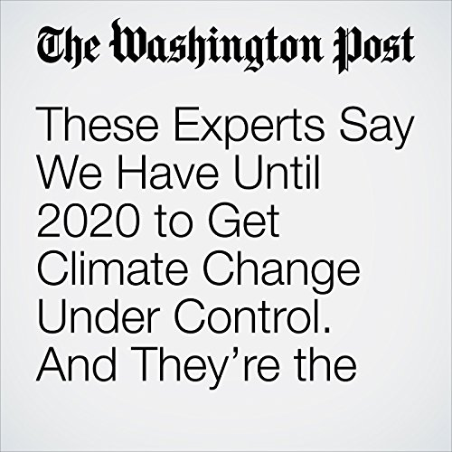 These Experts Say We Have Until 2020 to Get Climate Change Under Control. And They're the Optimists. copertina