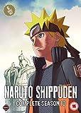 Naruto Shippuden Complete Season 10 Set (Episodes 459-500) [DVD]
