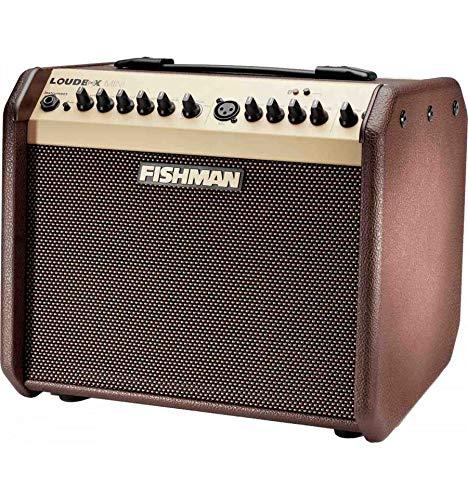 Fishman-Lautsprecherbox Mini-Bluetooth