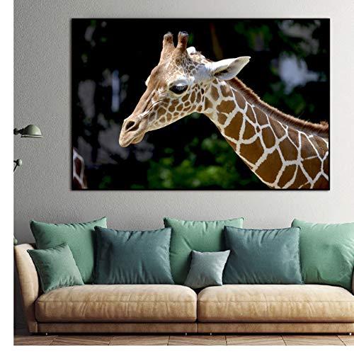 PCCASEWIND Bilder Wandbild Frameless 50X60Cm - Nordic Giraffe Wandkunst Leinwandbilder Wildlife Animals Art Poster Und Drucke Kinderzimmer Wandbilder Wohnzimmer Home Decor Ae5220
