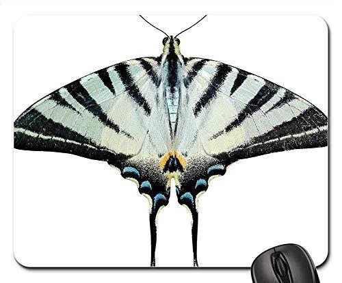 25X30cm Alfombrilla de Ratón Mariposa PNG Transparente Ali Polilla Papilionidae