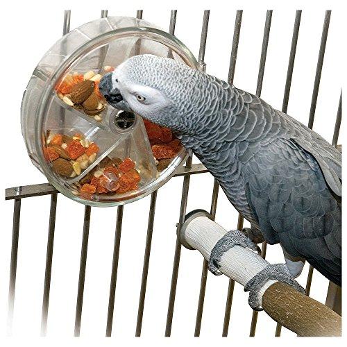 Distributeur de friandises pour grde perruche / perroquet
