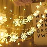 Cadena de Iluminación de LED, Luces de Hadas de Copo de Nieve, Cadena de Luces de Hadas, Decoración para Fiesta de Boda, Lámpara de Jardín, Guirnalda de Luces de Red, Decoración de Navidad 10M 100LED