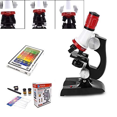 Lernspielzeug Mikroskop Biologie Erforschung Kinder Wissenschaft Und Bildung Set HD 1200 Mal Mikroskop Spielzeug Schüler Experimentator