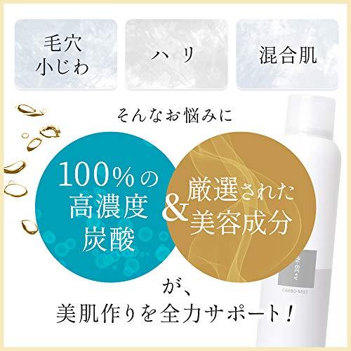 【iN-BE+v】インビィプラスブイカーボミストA(1本)