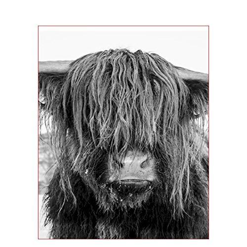 Rinderfarbe Keine Zahlen zum Malen Erwachsene Tier Ungerahmt Auf Leinwand Digitale F?rbung Zeichnung Nach Zahlen ?lbild Dekoration 40x50 cm