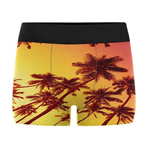 Beach Sunset Palm Trees Men's Boxer Briefs Trunks Underwear 5XL