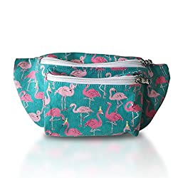 Cute Fanny Pack from Who's Your Fanny
