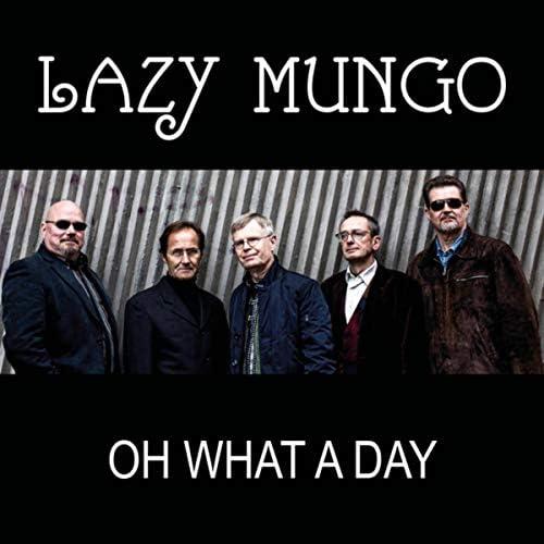 Lazy Mungo