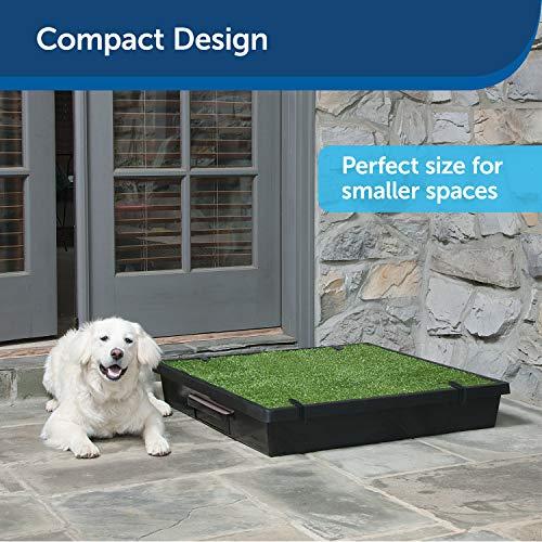 PetSafe Pet Loo Portable Dog Potty, Alternative to Puppy Pads, Large