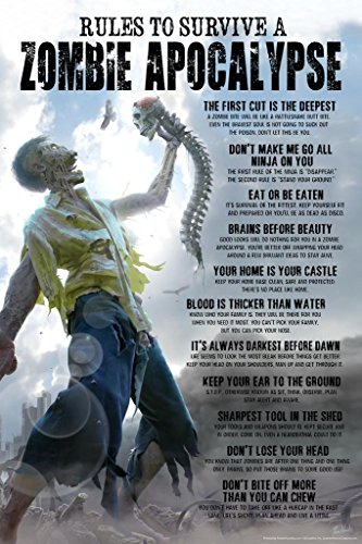 Rules to Survive A Zombie Apocalypse Horror Spooky Scary Halloween Decoration Cool Wall Decor Art Print Poster 24x36