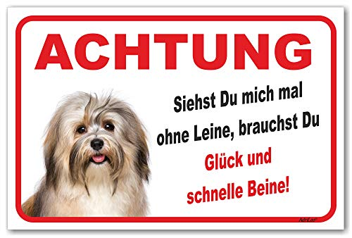 AdriLeo Schild - Vorsicht Havaneser - Ohne Leine - (20x30cm) / Achtung Hund Wachhund