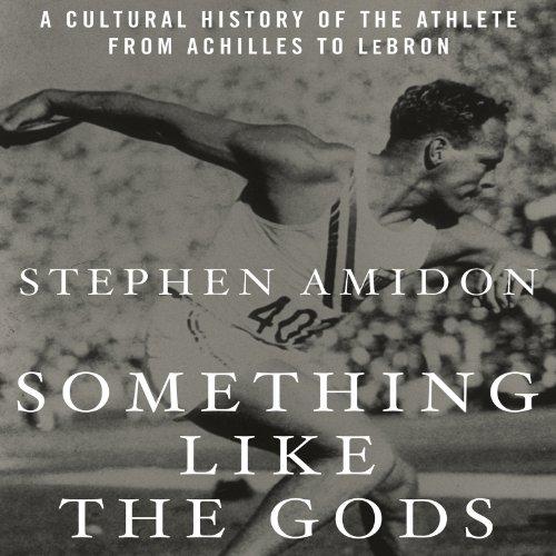 Something like the Gods audiobook cover art