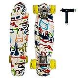 Sumeber Complete Mini Cruiser Skateboard 22 Pulgadas con Ruedas Light Up...
