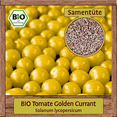 BIO Tomate Samen Sorte Golden Currant (Solanum lycopersicum) Gemüsesamen Tomate Saatgut