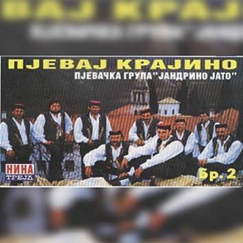 Pjevaj Krajino