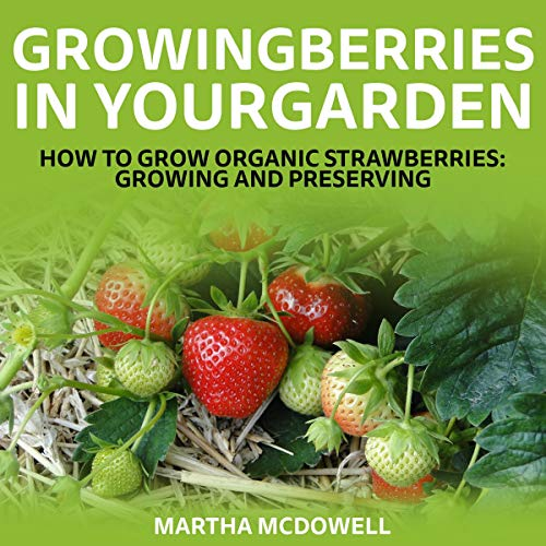 Growing Berries In Your Garden Titelbild