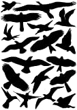 EAST-WEST Trading GmbH Vogelaufkleber für Fenster, Wintergärten, Glashäuser zum Vogelschutz, Warnvogel Vogel-Silhouetten, Schutz vor Vogelschlag, Fensterschutz von ewtshop® Art.Nr. EWT-16-A-0072-1